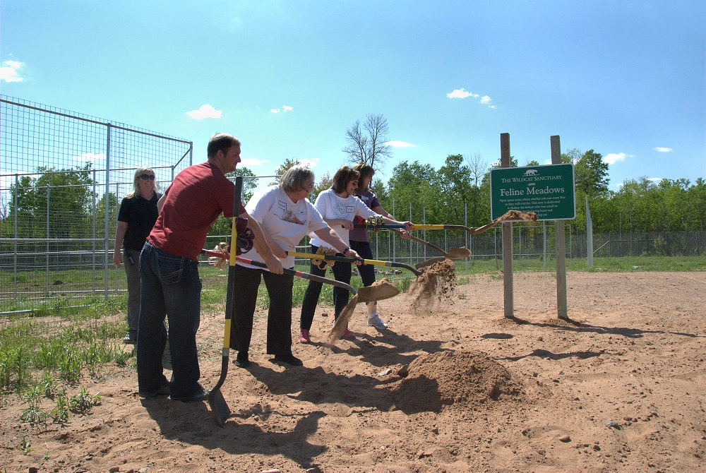 Breaking ground on new building site (credit: The Wildcat Sanctuary)