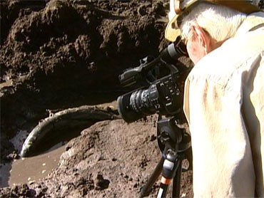 The fossil discovery in Snowmass Village. (credit: CBS)