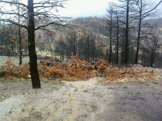 Minor flooding in the Fourmile Fire burn area in May. (credit: CBS)