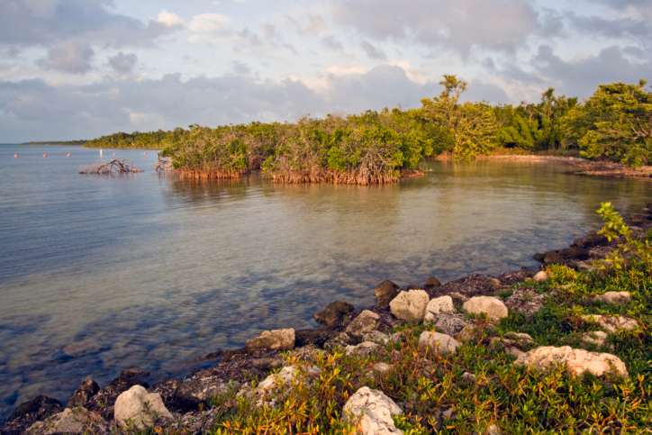 Biscayne National Park - a top scuba diving and fishing destination - is mostly water. Located at the southern tip of Florida, the park is also home to an large mangrove forest. (Photo Credit: Thinkstock.com)