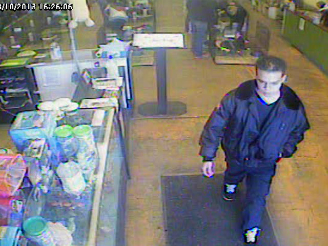 This man stole a Maltese tea cup puppy from the Pet Ranch in Thornton (credit: Thornton Police)