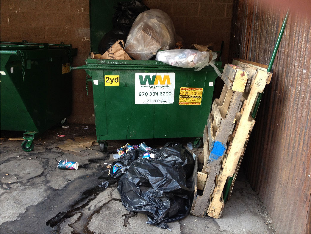 The dumpster in Aspen where the bear was observed (credit: CBS)