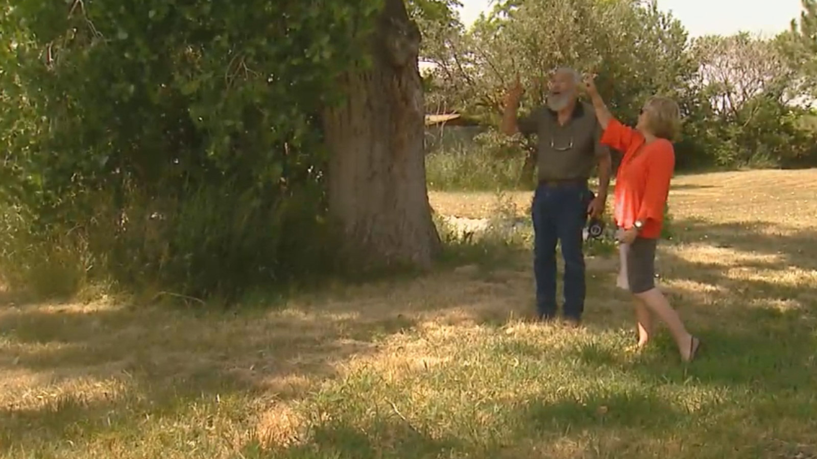 George Ray shows CBS4's Suzanne McCarroll where the drone was flying before it crashed (credit: CBS)