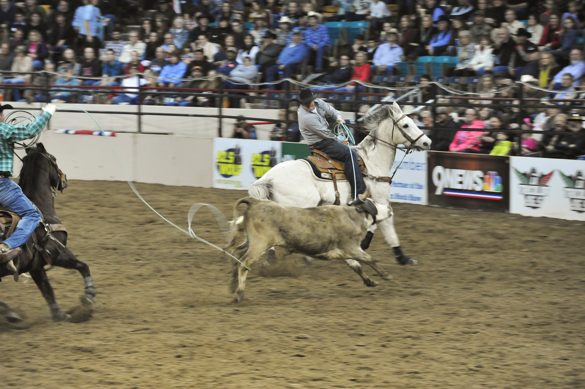 The National Western Stock Show hosted a Military and Veterans Appreciation Rodeo Jan. 20, 2015, in the Denver Coliseum. (U.S. Army National Guard photo by 1st Lt. Skye Robinson/Released)