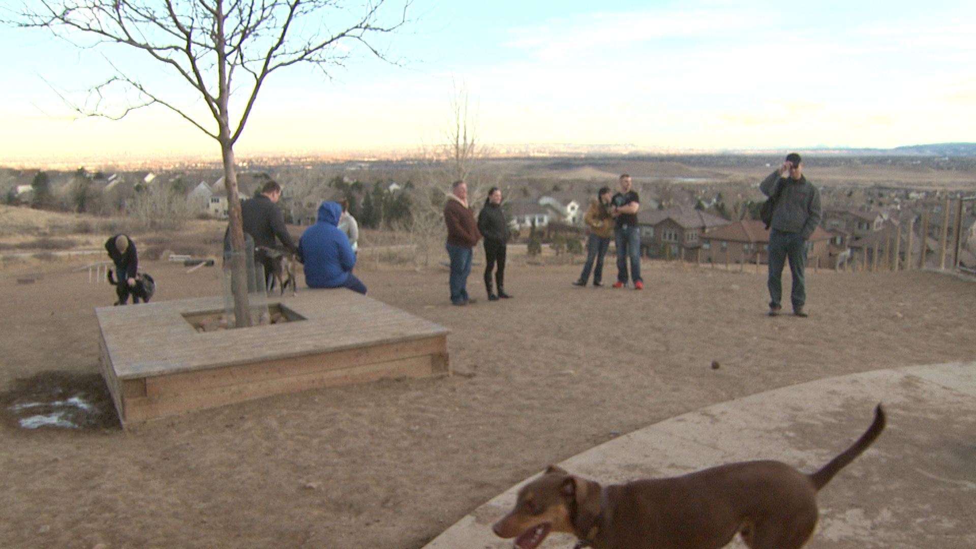 The dog park where the crime happened. (credit: CBS)