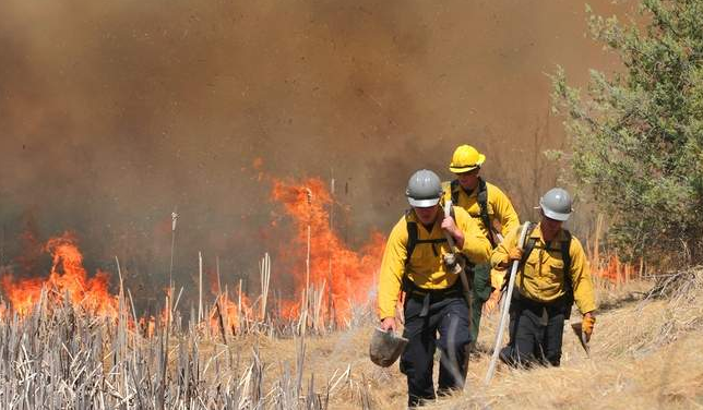 The 213 Fire (credit: Durango Herald)