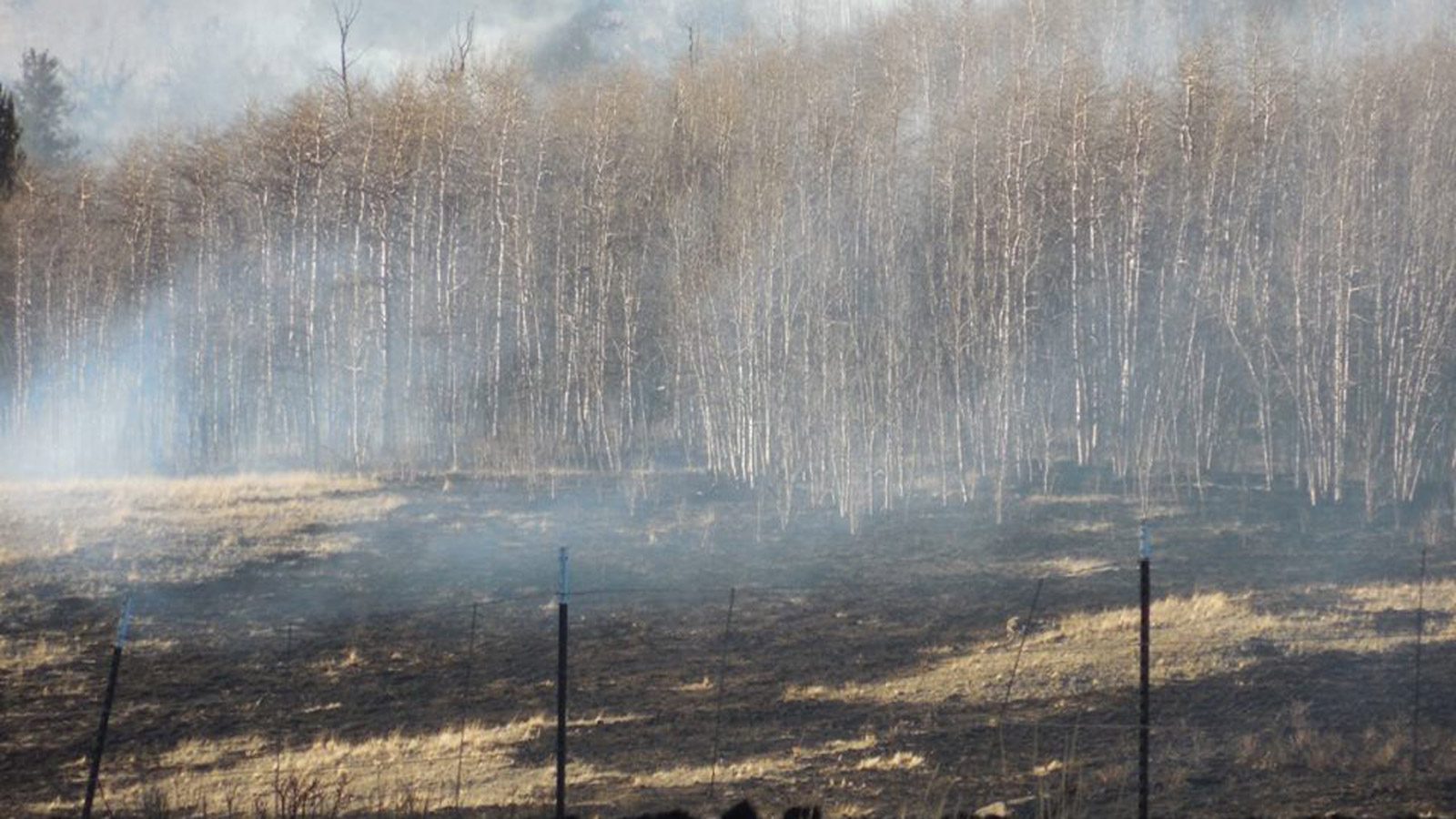 Snyder Creek 2 Fire (credit: Sherrie Muldoon)