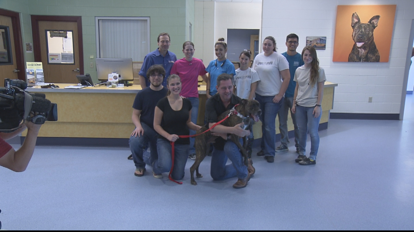 An emotional reunion for the family of Boozer the dog at the Foothills Animal Shelter (credit: CBS)