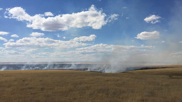 The fire in Elbert County near Agate (credit: Elbert County Sheriff's Office)