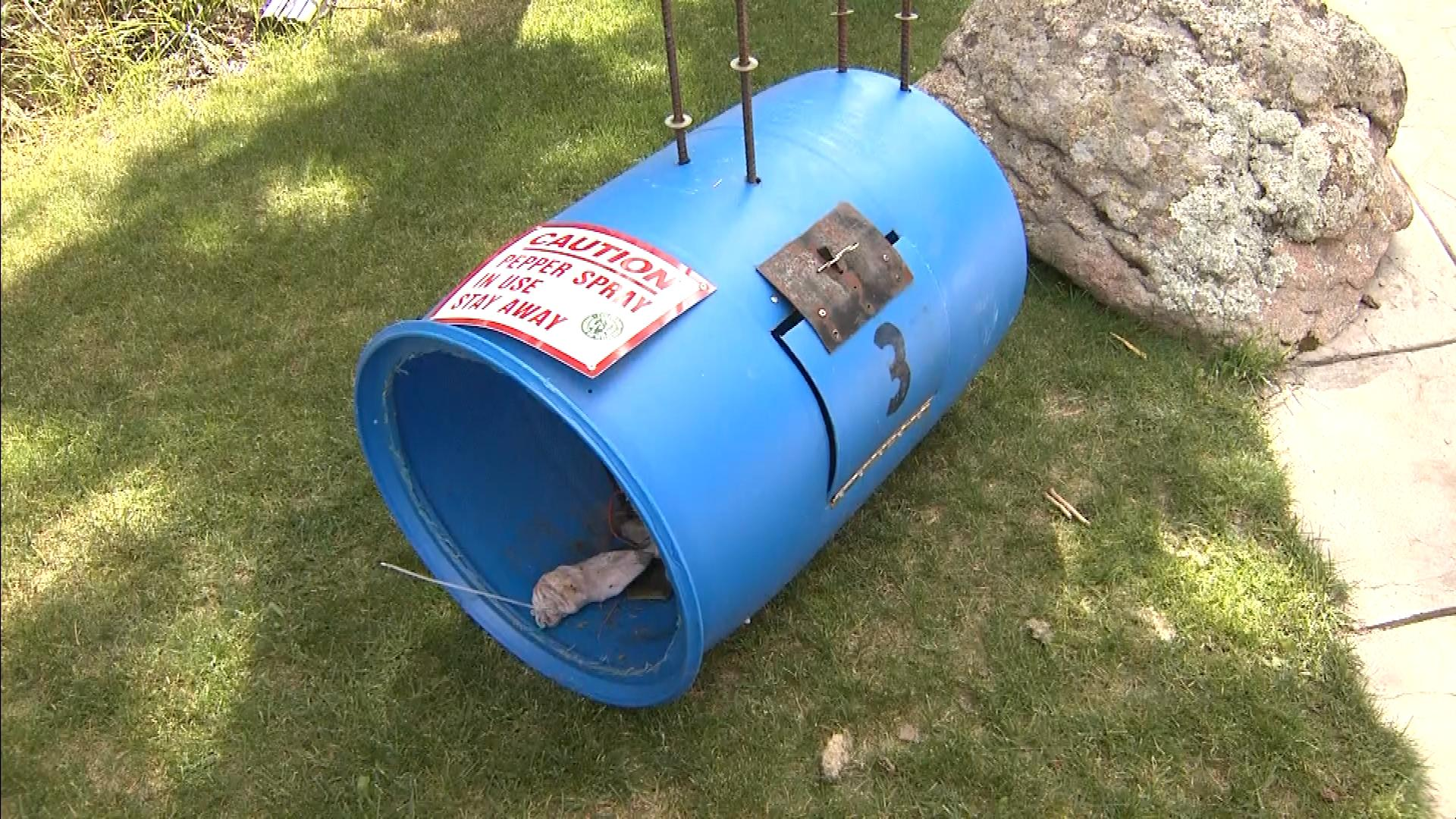 A pepper spray bear trap (credit: CBS)