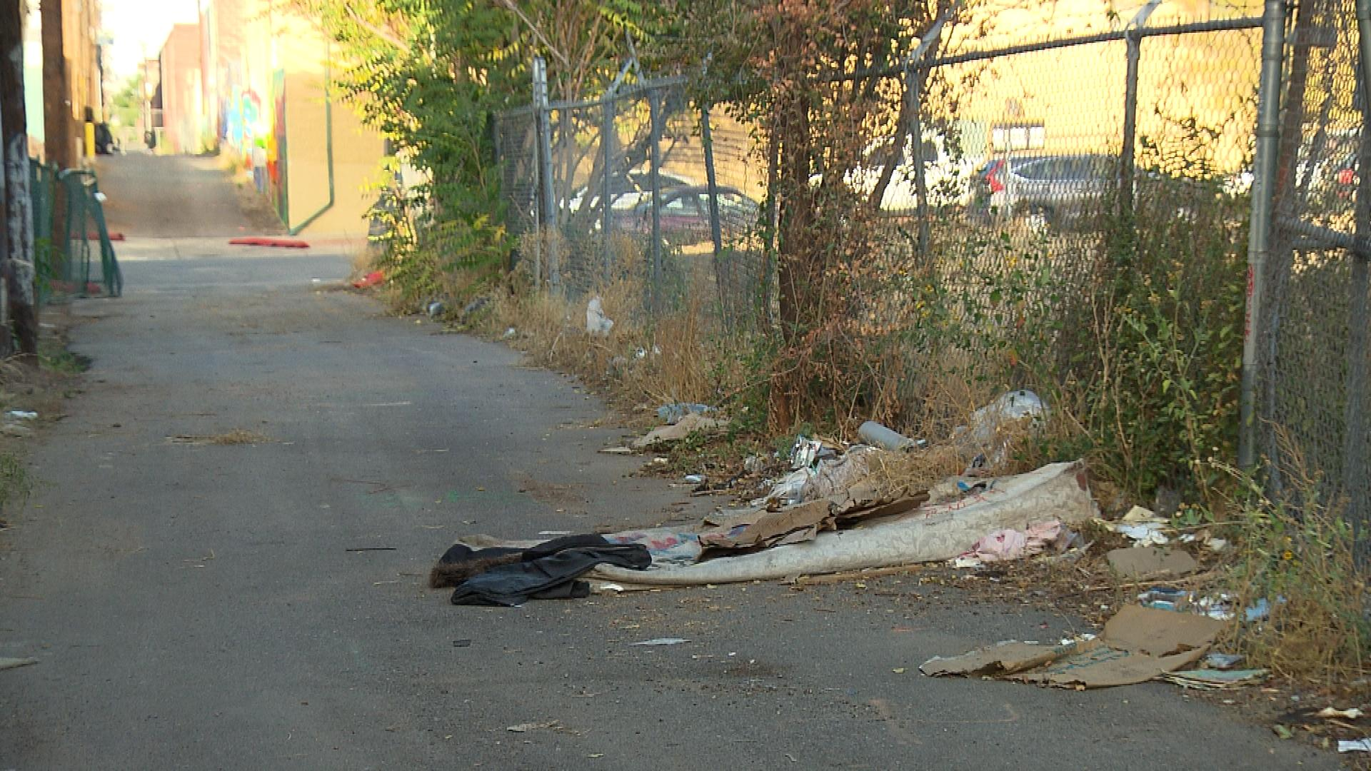 The alley where the hit-and-run occurred (credit: CBS)