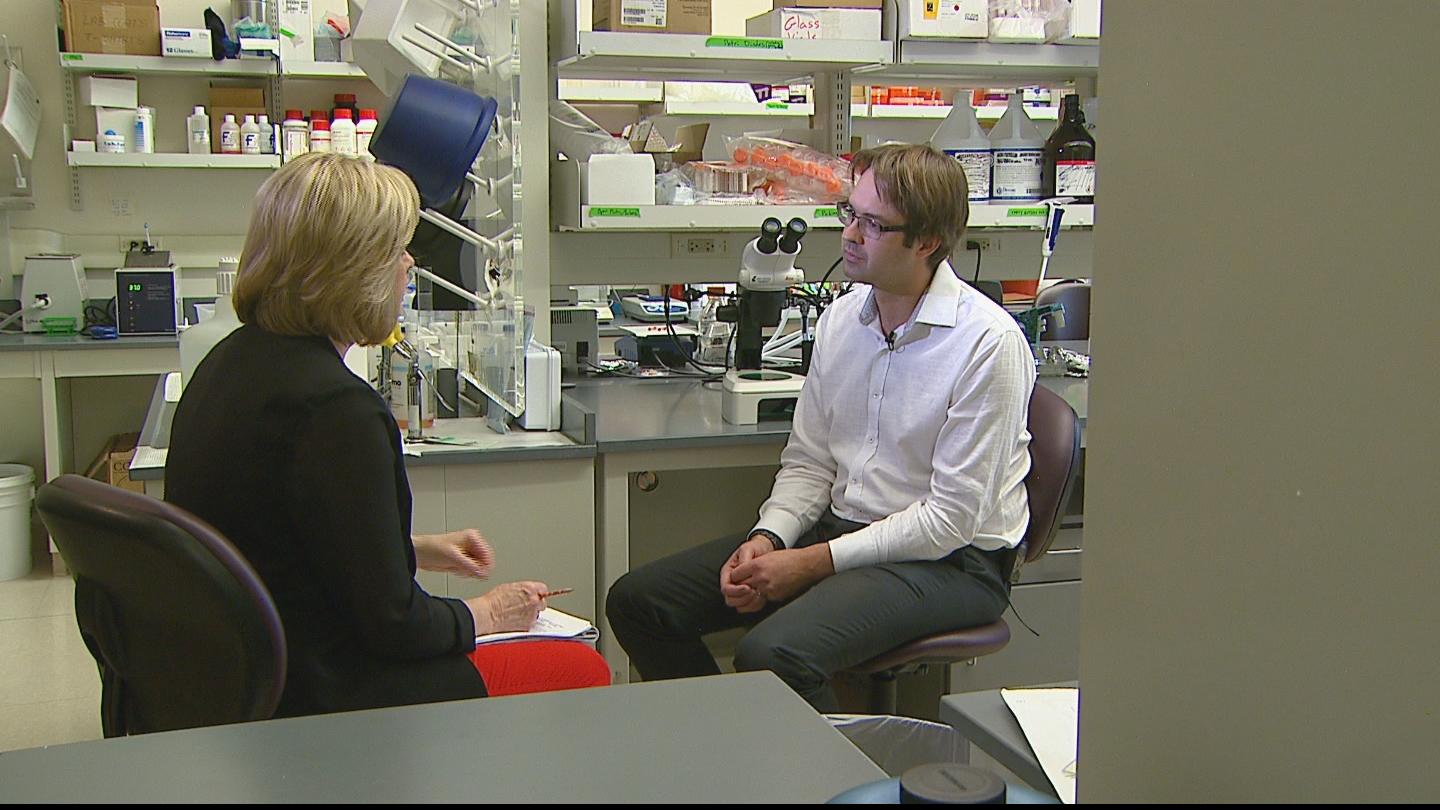CBS4's Kathy Walsh interviews Dr. Richard Benninger (credit: CBS)