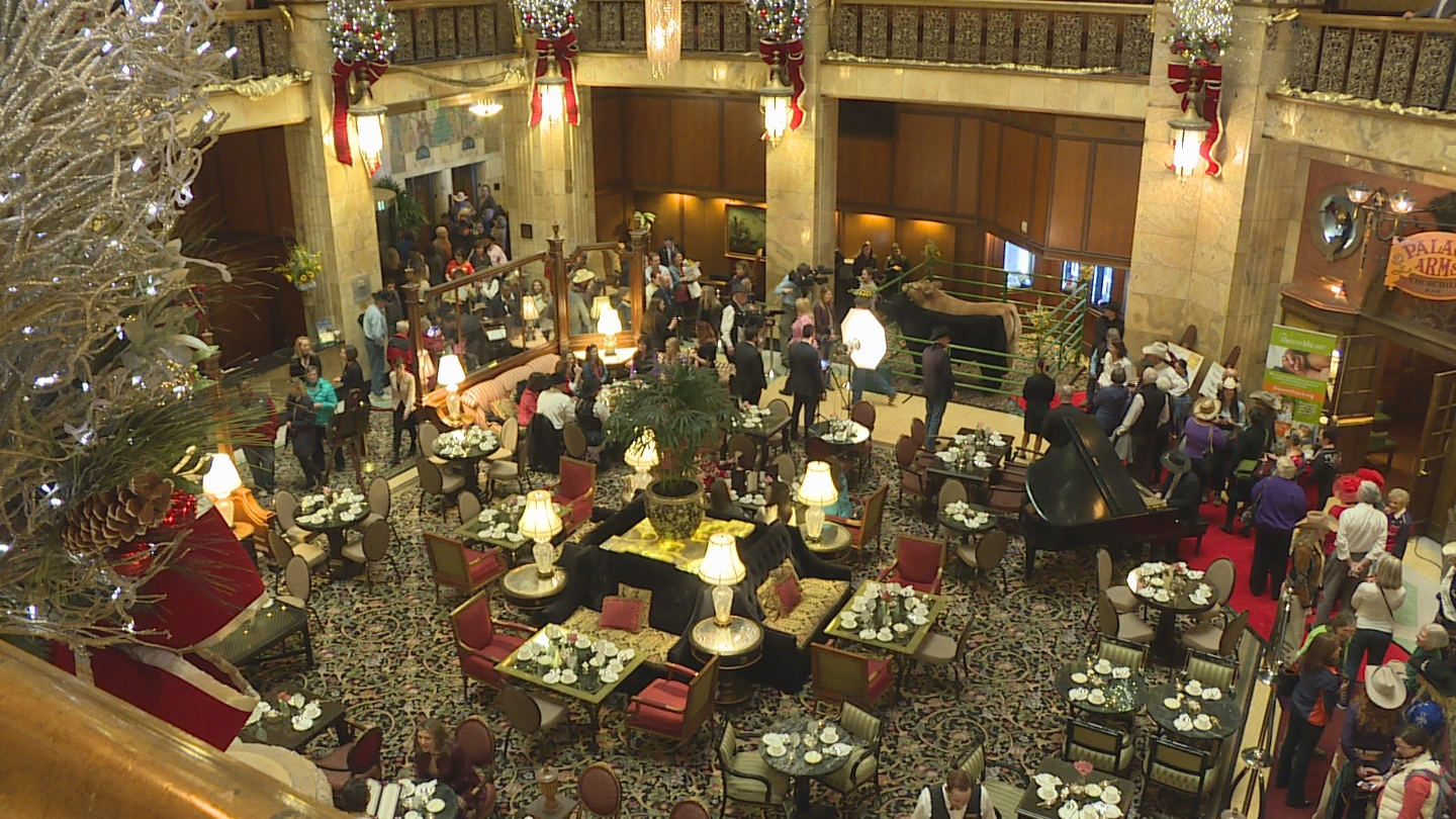 The Grand Champion Steer at the Brown Palace (credit: CBS)