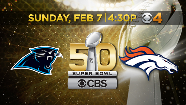 Denver Broncos Carolina Panthers Super Bowl 50 logo