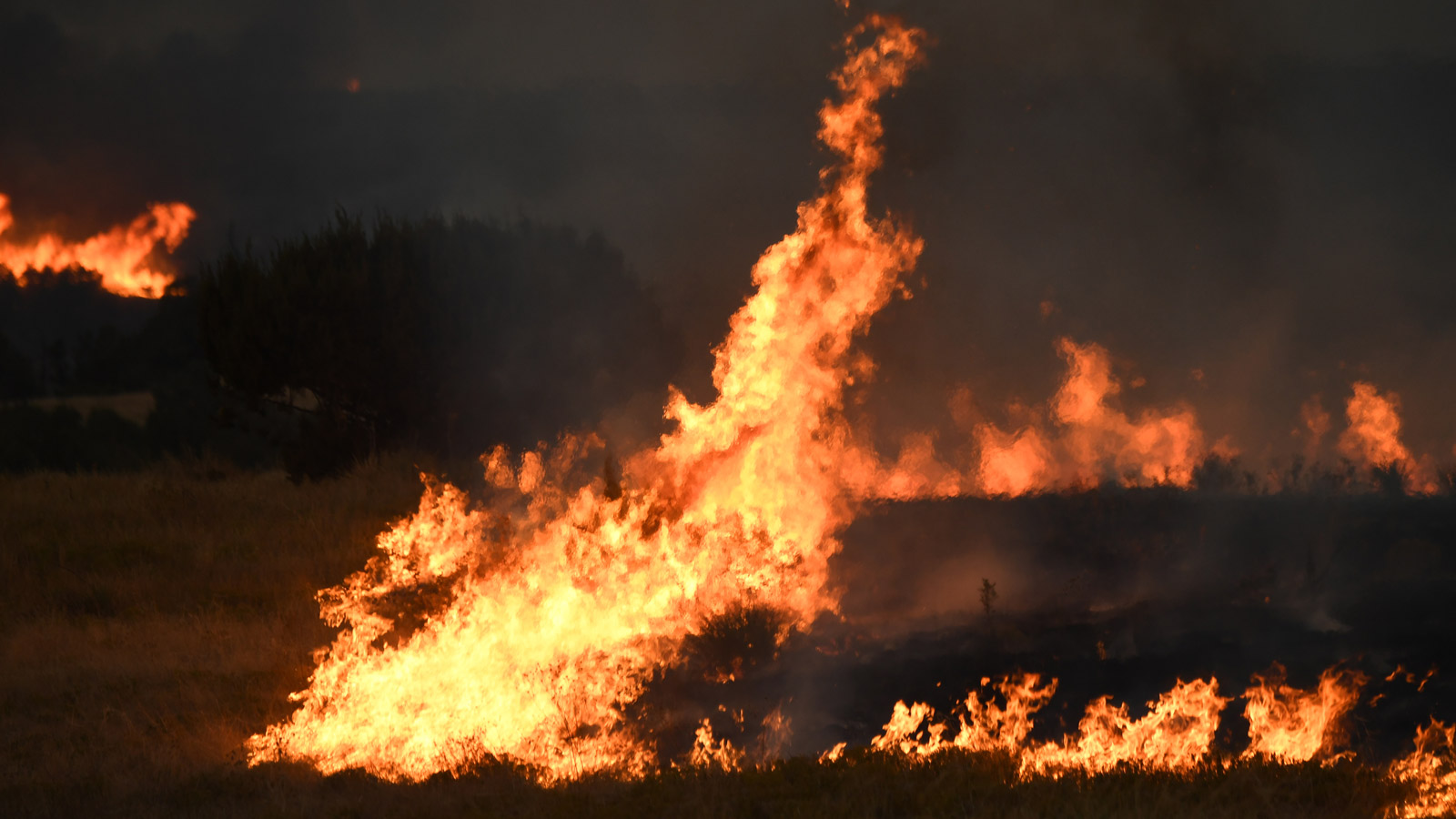 The Beulah Hill Fire burns near the town of Beulah on Oct. 3. Residents in the area were placed on pre-evacuation status. (credit: RJ Sangosti/The Denver Post via Getty Images)