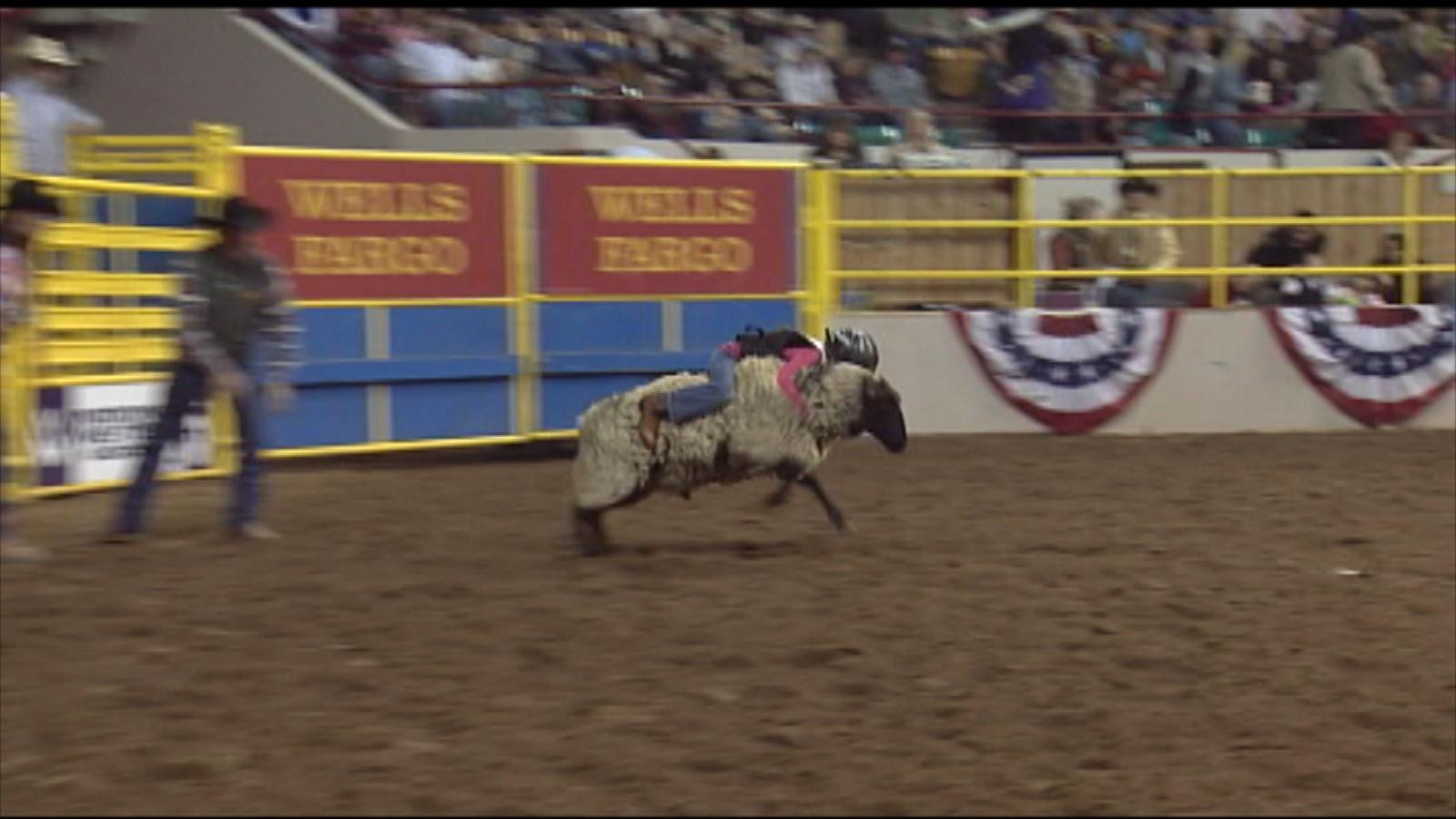 Mutton Bustin' (credit: CBS)